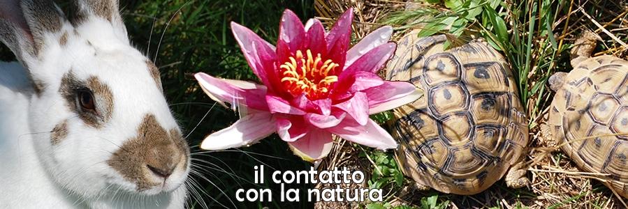 Contatto con la Natura